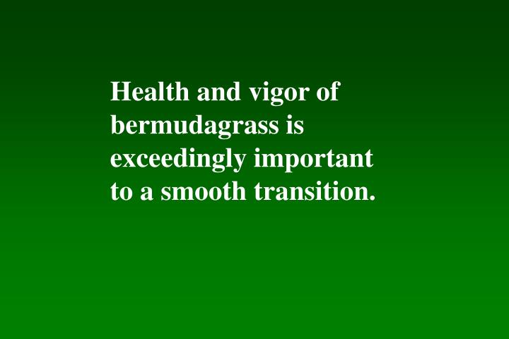 Health and vigor of bermudagrass is exceedingly important to a smooth transition.