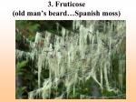 3 fruticose old man s beard spanish moss