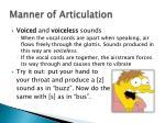 manner of articulation1