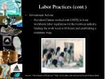 labor practices cont