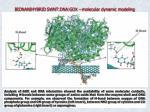bionanihybrid swnt dna gox molecular dynamic modeling1
