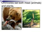 omnivores eat both meat animals and plants