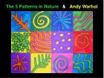 the 5 patterns in nature andy warhol