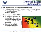 analytic issues defining risk