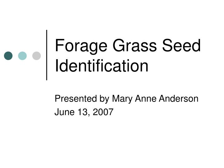 forage grass seed identification n.