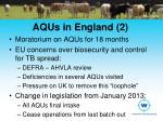 aqus in england 2