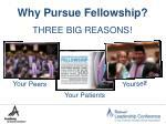why pursue fellowship
