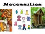 necessities