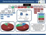 ownership structure example usiminas 2011