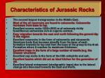 characteristics of jurassic rocks