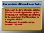 characteristics of permo triassic rocks