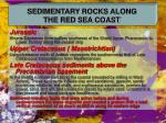 sedimentary rocks along the red sea coast