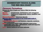sedimentary rocks along the red sea coast1