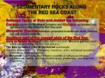 sedimentary rocks along the red sea coast2