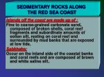 sedimentary rocks along the red sea coast5