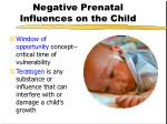 negative prenatal influences on the child