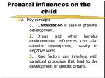 prenatal influences on the child