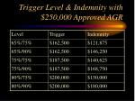 trigger level indemnity with 250 000 approved agr