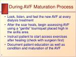during avf maturation process