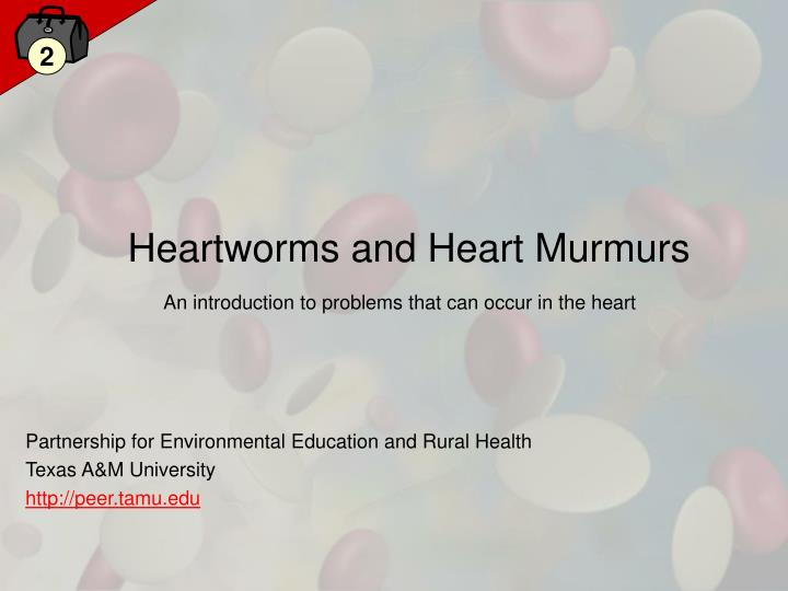 heartworms and heart murmurs n.