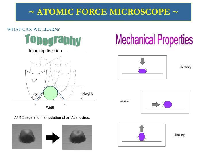 Atomic force microscope1