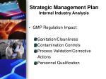 strategic management plan internal industry analysis1