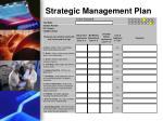 strategic management plan1