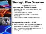 strategic plan overview1
