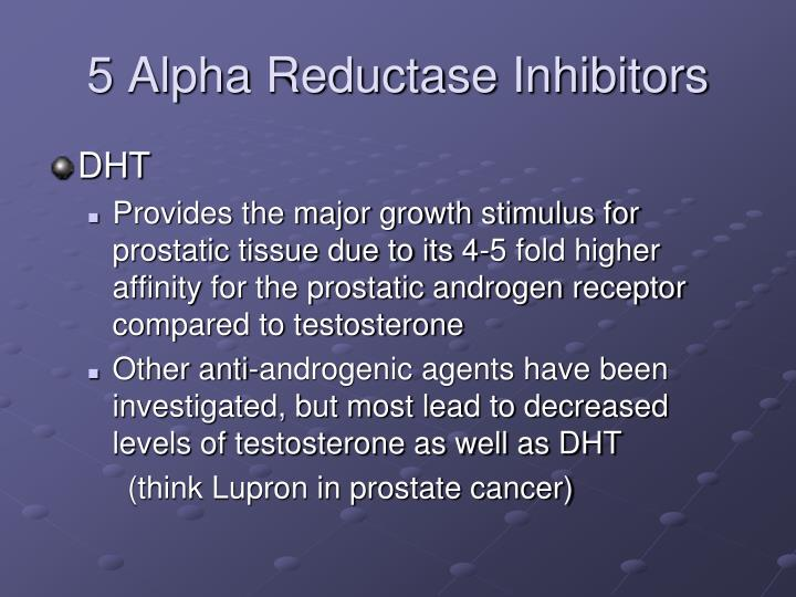 5 Alpha Reductase Inhibitors Dht