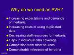 why do we need an avh