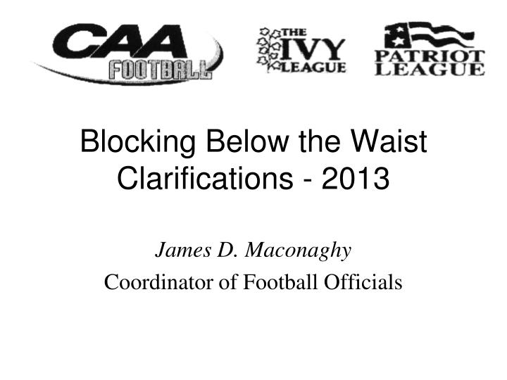 blocking below the waist clarifications 2013 n.