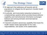the strategy vision