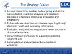 the strategy vision1