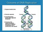 outcome of dna replication