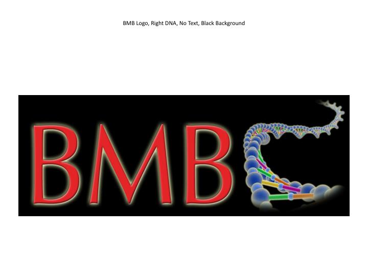 bmb logo right dna no text black background n.