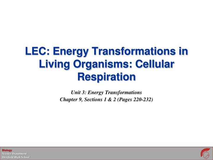 lec energy transformations in living organisms cellular respiration n.