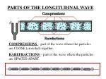 parts of the longitudinal wave