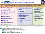 centennial of naval aviation committee structure