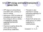 3 1 3 atp energy and acetyl coenzyme a acetyl coa