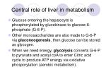 central role of liver in metabolism