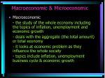macroeconomic microeconomic