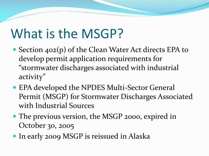 What is the MSGP?