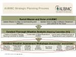 aubmc strategic planning process