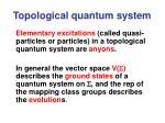 topological quantum system1