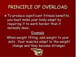 principle of overload