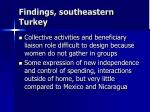 findings southeastern turkey1