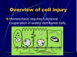overview of cell injury