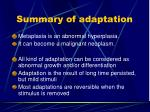 summary of adaptation2