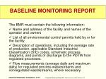 baseline monitoring report2