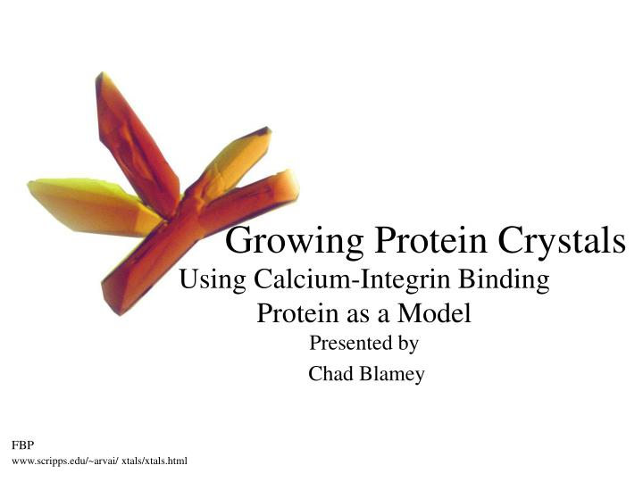 growing protein crystals n.